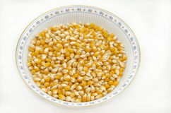 Kernels, seeds Corn Royalty Free Stock Photo