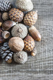 Kernels and seeds Stock Photos