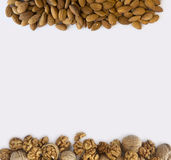 Kernels walnuts and almonds on a white background. Almonds and walnuts at border of image with copy space for text. Background of nuts. Kernels walnuts and Stock Photo