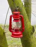 Kerosene lamp. Red oil lamp hanging from a tree Stock Photography