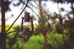 Kerosene lamp in the woods Stock Photos