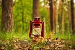Kerosinlampe im Waldzusammenfassungsfoto lizenzfreies stockbild