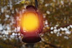 Kerosinlampenglanz unter den Bäumen, die Zeit in einem Garten/in einem Hinterhof glätten stockfotos