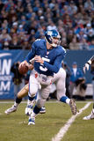 Kerry Collins Immagine Stock