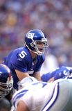 Kerry Collins new york giants Obraz Royalty Free