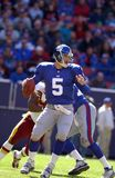 Kerry Collins new york giants Zdjęcie Royalty Free