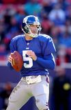 Kerry Collins new york giants Fotografia Stock