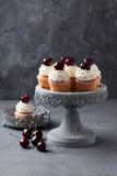 Kers cupcakes Royalty-vrije Stock Fotografie