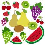 Kers, druiven, kiwi, watermeloen, vrolijk, peer en aardbei Bessen en vruchten Hand getrokken krabbel vectorschets Zoet Voedsel royalty-vrije illustratie