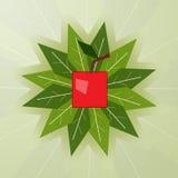 Kers tegen de achtergrond van groene bladeren Royalty-vrije Stock Afbeelding