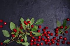 Kersen - bessen op zwarte achtergrond De zomervruchten Voedselachtergrond, lay-out, copyspace stock foto