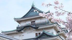 Kersenbloesem bij Wakayama-Kasteel stock fotografie