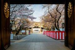 Kersenbloesem bij Yasukuni-Heiligdom, Tokyo, Japan een beroemde Touris royalty-vrije stock afbeelding