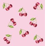Kersenbloesem op een lichte achtergrond Royalty-vrije Stock Afbeelding