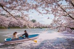 Kersenbloesems in de lente bij Hirosaki-Kasteel, Aomori-Prefectuur, J royalty-vrije stock foto