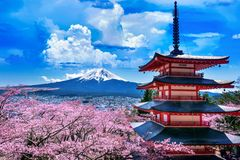 Kersenbloesems in de lente, Chureito-pagode en Fuji-berg in Japan royalty-vrije stock afbeelding