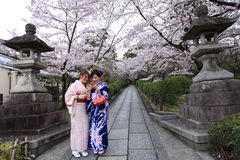 Kersenbloesems, Kiyomizudera, Japan Stock Afbeelding