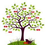 Kersenboom en vogel Royalty-vrije Stock Foto's