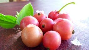 Kersonfruit Stock Afbeelding