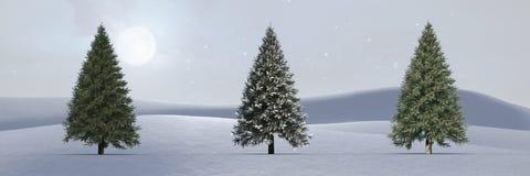 Kerstbomen in de winterlandschap met mistige hemel Stock Foto's