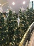 Kerstbomen met sterren op het winkelende centrum Stock Foto