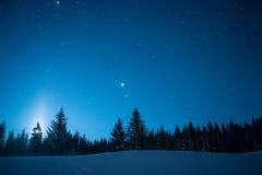 Kerstbomen op de achtergrond van de sterrige de winterhemel Maan Royalty-vrije Stock Foto's