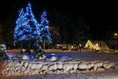 Kerstbomen in openbare ruimte Royalty-vrije Stock Foto