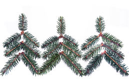 Kerstbomen van nette takjes royalty-vrije stock foto's