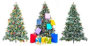 Kerstboom. Stock Foto's