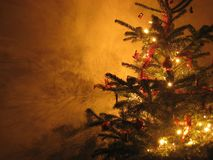 Kerstboom Stock Fotografie