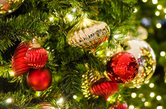 Kerstboom Stock Foto