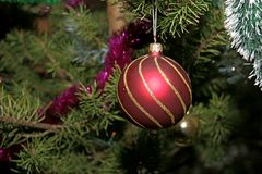 Kerstboom Royalty-vrije Stock Foto