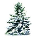 Kerstboom behandelde sneeuw in de geïsoleerde winter, Stock Foto