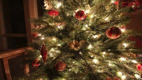 Kerstboom bij nacht stock videobeelden
