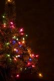 Kerstboom bij nacht Stock Foto
