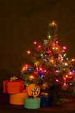 Kerstboom bij nacht Royalty-vrije Stock Foto's