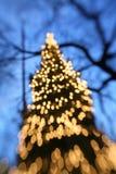 Kerstboom bij schemer Stock Fotografie