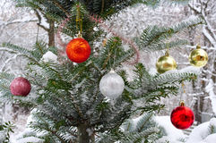 Kerstboom buiten in de sneeuw, met Kerstmisspeelgoed dat wordt verfraaid Royalty-vrije Stock Afbeelding