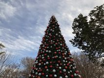 Kerstboom in Dallas Texas stock afbeelding