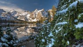 Kerstboom in de bergen met ijscycli Stock Foto's
