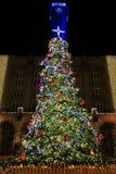 Kerstboom in de donkere nacht Stock Fotografie