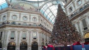 Kerstboom in de stad van Milaan Royalty-vrije Stock Fotografie