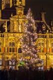 Kerstboom in Delft, Nederland Royalty-vrije Stock Afbeelding