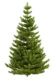 Kerstboom die op witte achtergrond wordt geïsoleerdr vector illustratie