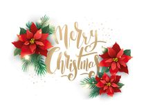 Kerstboom en Bloem Geïsoleerde decoratie Stock Foto's