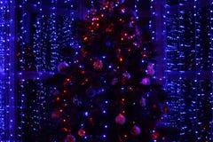 Kerstboom en lichten Stock Fotografie