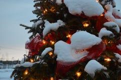 Kerstboom en lichten, sparren en sneeuw Stock Fotografie