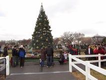 Kerstboom en Menigte bij de Ellips stock fotografie