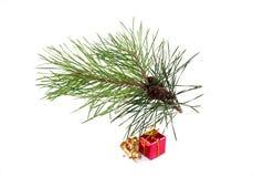 Kerstboom en rode gift Stock Afbeeldingen