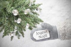 Kerstboom, Handschoen, Joyeux Noel Means Merry Christmas, Sneeuwvlokken Royalty-vrije Stock Afbeelding